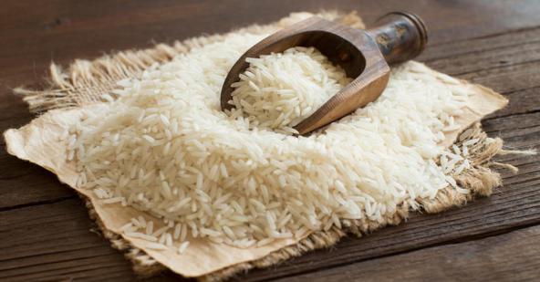 تولید بهترین برنج ایرانی طارم معطر شمال
