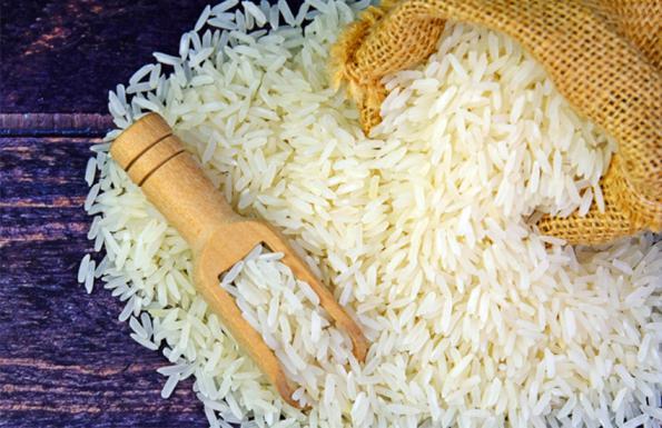 انواع برنج شمال ایران را بهتر بشناسید