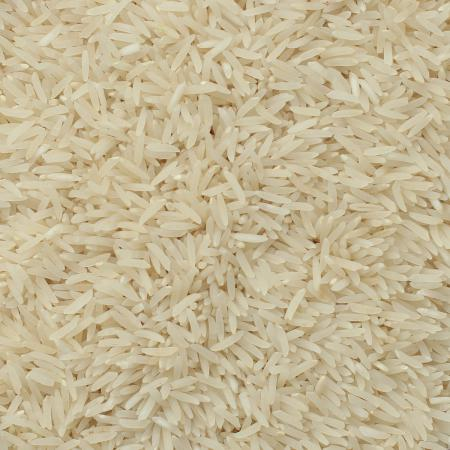 خرید عمده برنج فجر طارم