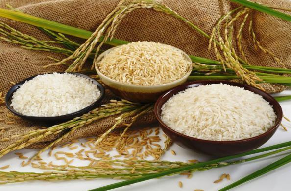 درمان ورم معده با برنج