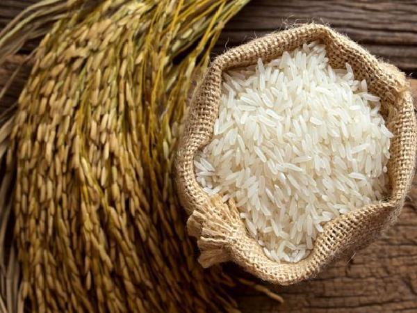 چگونه برنج خام را در خانه نگهداری کنیم؟