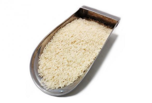 فروش کلی برنج طارم کشت اول